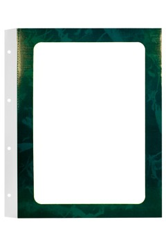 Kartoneinschubflächen A4, grün 10 Stk.
